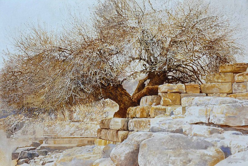 LEIGH VOIGT, Pistacia atlantica, Turpentine Tree, Petra Oil on canvas